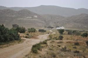 2014-04-20-Maknassy-Mech-Sidi Bel Aziz-2-net